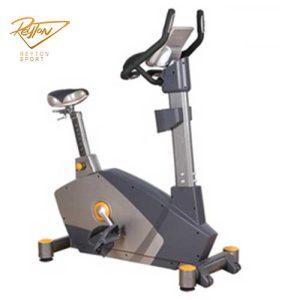 چرخ ثابت ایستاده باشگاهی dft fitness مدل ۲۱۰۰